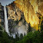 Twilight at Yosemite by Barbara  Brown