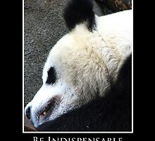 ZooTips: Be Indispensable by Angie Dixon