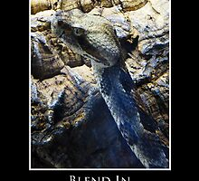 ZooTips: Blend In by Angie Dixon