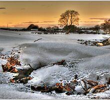 A Winters Day by Derek Dobbie