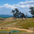 Dam & hilly view, Range Rd West, Sellicks Hill Range, Fleurieu by shallay