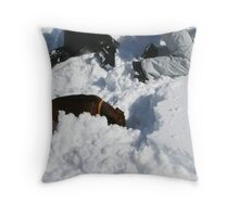 THE AVALANCHE-RESCUE-DACHSHUND Throw Pillow