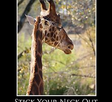 ZooTips: Stick Your Neck Out by Angie Dixon