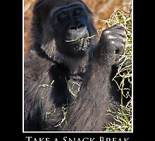 ZooTips: Take a Snack Break by Angie Dixon
