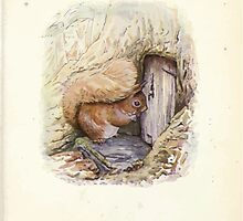 The Tale of Squirrel Nutkin Beatrix Potter 1903 0029 A House Full a Hole Full by wetdryvac