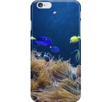 Mystic Colorful Fish iPhone Case/Skin