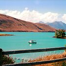 Lake Tekapo by apple88