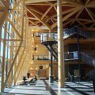 Forest Hall, the lobby to Sibelius Hall by nealbarnett