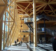 Forest Hall, the lobby to Sibelius Hall by nealbarnett