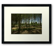 Lungs of the Earth Framed Print