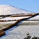 Dingle Peninsula, Co. Kerry, Ireland in the Snow by Pat Herlihy