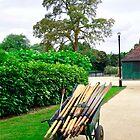 A Barrow Load of Oars by Rod Johnson