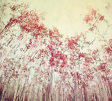 The Red Forest by Priska Wettstein