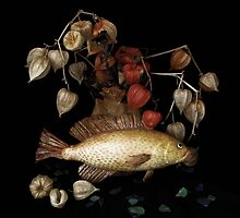 Fishy Still-Life by 1bluecanoe