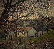 Mala Remeta by Milos Markovic