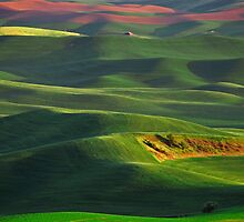 Sunset on the Palouse by Steve Biederman