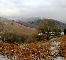 Winters day on the Malvern Hills by LisaRoberts