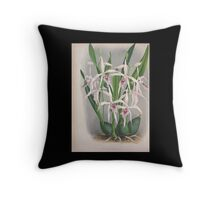 Iconagraphy of Orchids Iconographie des Orchidées Jean Jules Linden V4 1888 0054 Throw Pillow