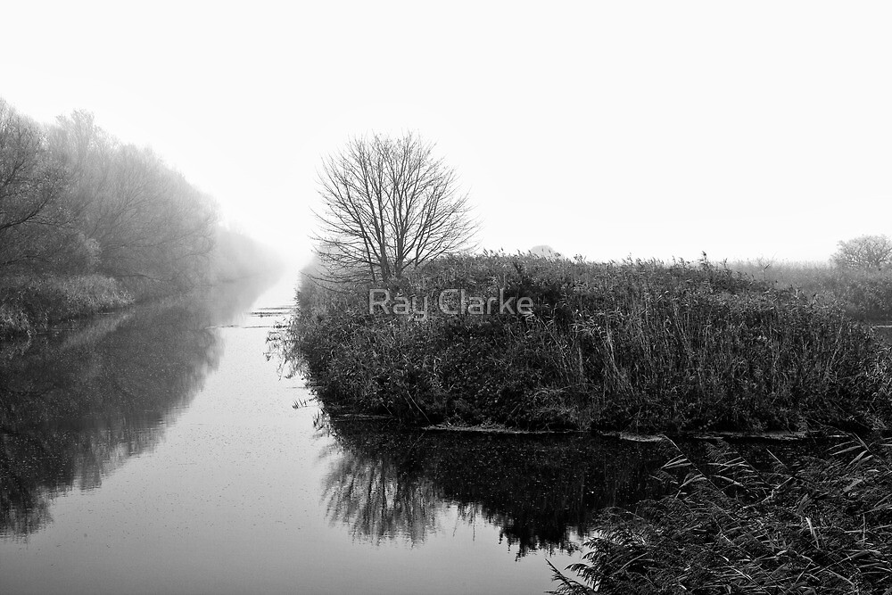 Foggy Fens by Ray Clarke