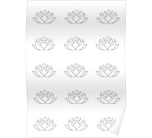 White lotos flower Poster