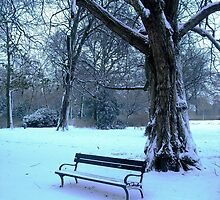 Too cold to sit & enjoy the scenery today! by Stephanie Owen
