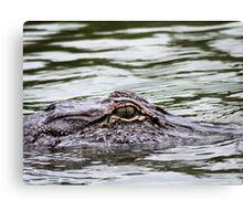 Alligator Eye Canvas Print