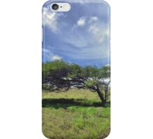 The Wind Swept Tree iPhone Case/Skin