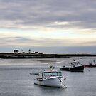 Cape Porpoise Harbor  by Monica M. Scanlan