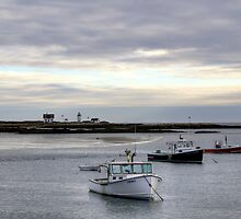 Cape Porpoise Harbor  by Monica M. Scanlan