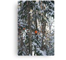 Winter arriving - Autumn leaving Canvas Print