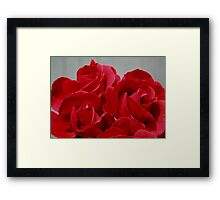 Red Roses Three Framed Print