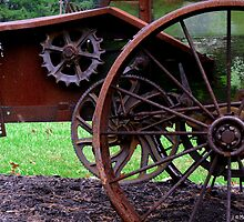Antique Manure Spreader  by Marcia Rubin