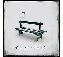 Son of a bench Photographic Print