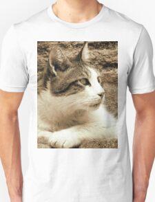 cat02 sepia Unisex T-Shirt