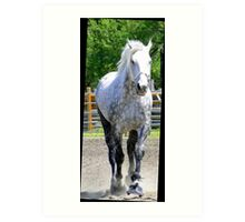 The Old Gray Mare Art Print