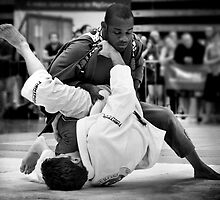 Brasilian Jiu Jitsu by Willy Karl Beecher