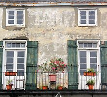 New Orleans Windows and Doors III by Igor Shrayer