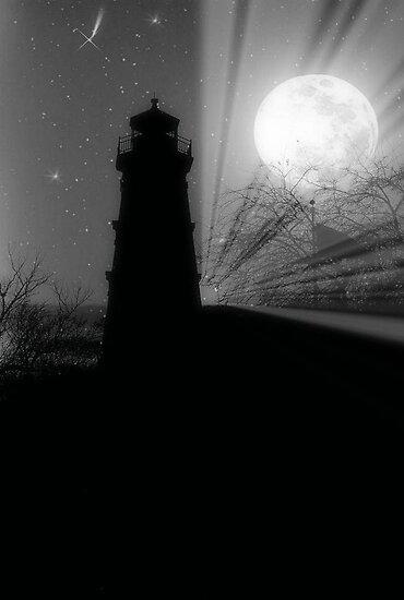 Bright Winter Night ©  by Dawn M. Becker