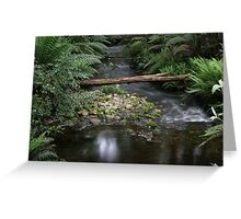 Pipdoodle Creek Greeting Card