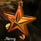 Merry Christmas by Gayle Dolinger