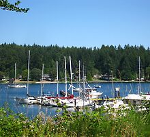 Longbranch marina, Washington state by Rainydayphotos