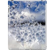 Crystal Blue Persuasion iPad Case/Skin