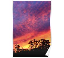 Sunset glow-New South Wales, Australia Poster