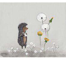 Nursery art - Hedgehog in the Fog Photographic Print