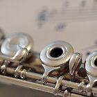 Flute Love by Sarah Bjorklund
