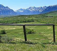 Foothills Ranch by Jann Ashworth