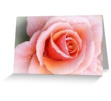 Perfect Creation.... Greeting Card