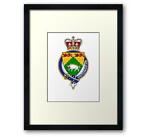 Coat of arms (family crest) for last-name or surname McDonough (Ireland) . Heraldry banner for your name. Framed Print