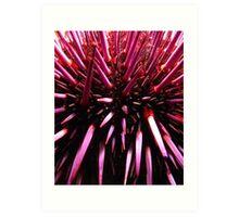 Purple Prickles. Art Print