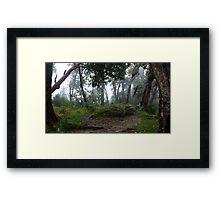 Cloud Forrest Framed Print